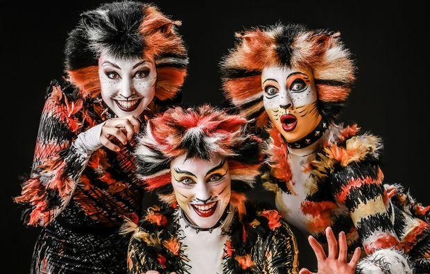 musical-dinner-neuss-cats