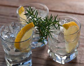 Gin-Tasting - Spoon Suppenbar - Bielefeld von 10 Sorten Gin & Tonic Water