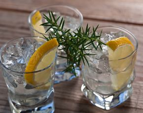 Gin Tasting Bielefeld