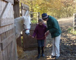 pferde-erlebnis2