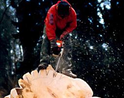Bildhauer- Workshop mit Holz und Kettensäge (Wochenendkurs) Neckartenzlingen mit Holz- & Kettensäge, Wochenendkurs