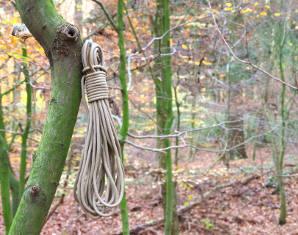 buschraft-seil-wald