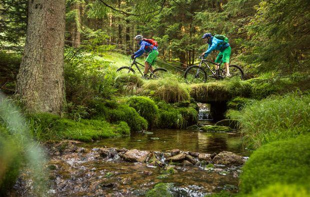 mountainbike-kurs-viechtach-natur