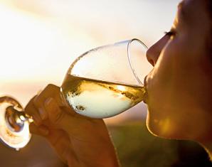 Weinverkostung Köln