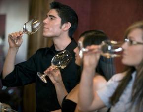Weinseminar für Einsteiger - Walldorf Weinsensorik mit Verkostung, inkl. Mineralwasser und Snacks