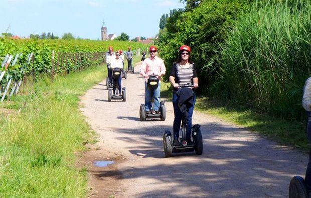 segway-panorama-tour-landau-in-der-pfalz-bg1