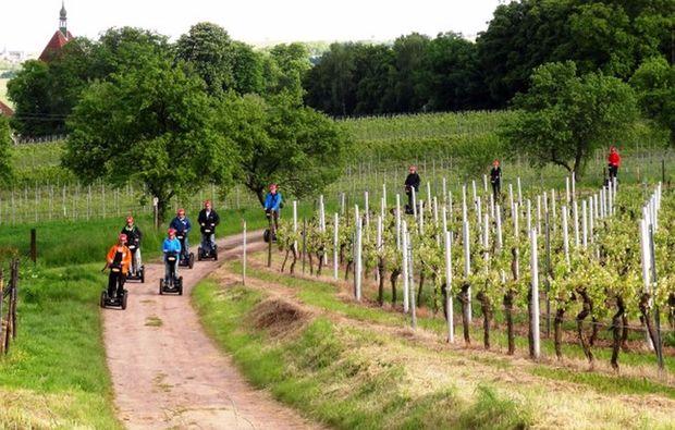 segway-panorama-tour