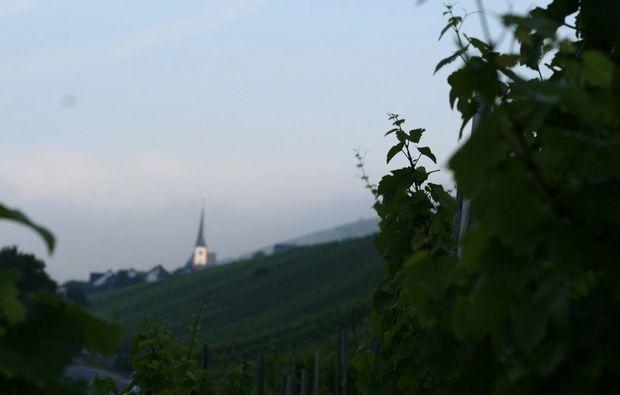 zauberhafte-unterkuenfte-enkirch-ausblick