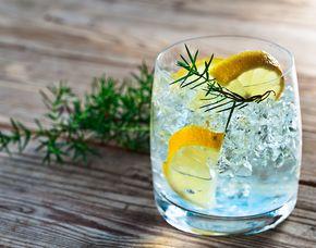 Gin Tasting - Barschule Rhein-Main - Hofheim am Taunus von 8-10 Sorten Gin
