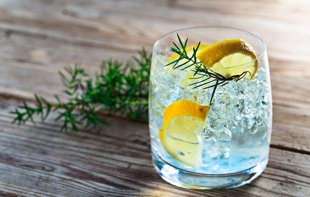gin-tasting-hattersheim