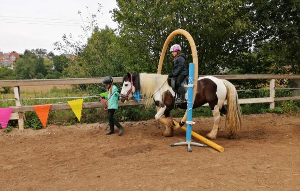 pferde-abenteuer-baunach-bg1