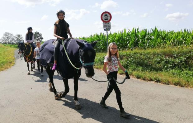 pferde-abenteuer-baunach-bg3