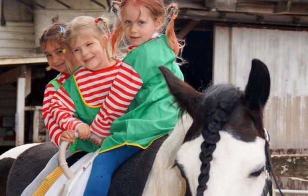 pferde-abenteuer-baunach-bg4