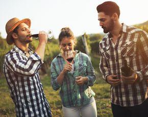 Weinverkostung - 5 Weine - Frankfurt am Main von 5 Weinen - bei Dir Zuhause