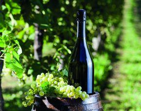 Weinseminar (Rotwein-Seminar) mit Verkostung von Rotweinen, ca. 3-4 Stunden