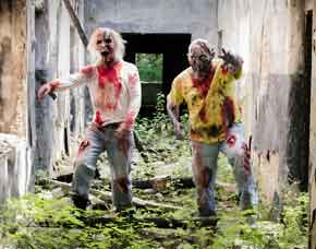 "The Living Dead Experience - ca. 3 Stunden 1 Person - ""Zombie-Mission"" - 3 Stunden"