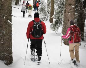 Schneeschuh-Wanderung - Feldberg Tages-Tour - ca. 7 Stunden