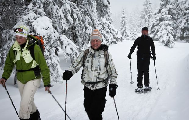 schneeschuh-wanderung-feldberg-schnee
