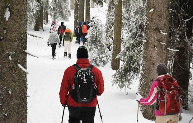 schneeschuh-wanderung-feldberg-winter