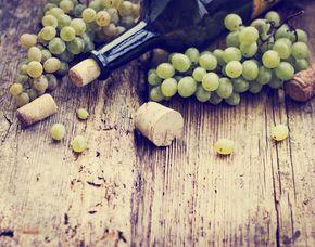 Weinverkostung - Vegan - Worms von 6 vegane Weine & 6 vegane Speisen