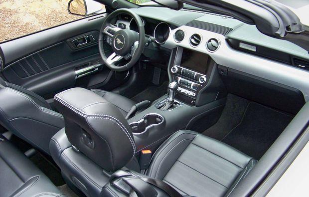 mustang-gt-fahren-ulm-cockpit