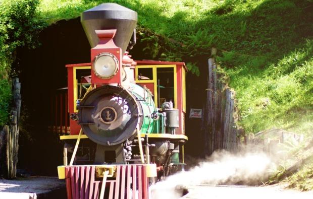 lokfuehrer-in-bestwig-lokomotive