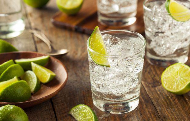 gin-tasting-marbach-am-neckar-seminar