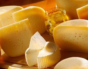 Käseverkostung - mit Wein - München von 18 Käse Sorten & 5 Weinen