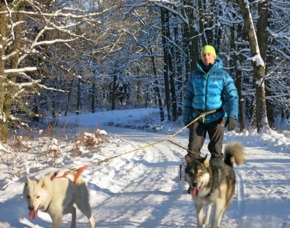 Huskywanderung - MD - Röderhof Ca. 2,5 Stunden