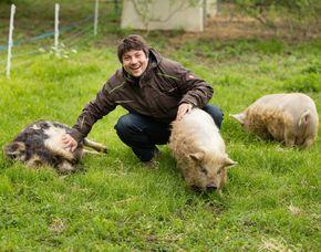 Familienurlaub - 1 ÜN - Bad Großpertholz Edermühle - Schweinestreicheln, Hofführung, Raclette