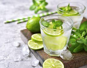 Gin Tasting von 5-8 Sorten Gin