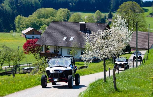 buggy-fahren-meissenheim-bg2