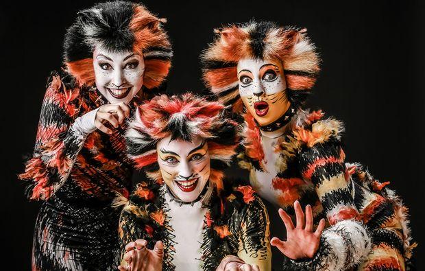 musical-dinner-winsen-cats