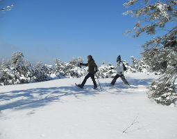 Schneeschuhwanderung für Kinder - ca. 3 Stunden Schneeschuhwanderung für Kinder - ca. 3 Stunden