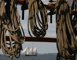 regatta-schiff