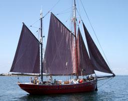 regatta-segeln