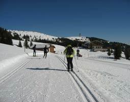 Langlaufen - Feldberg Grundkurs - 2 Tage