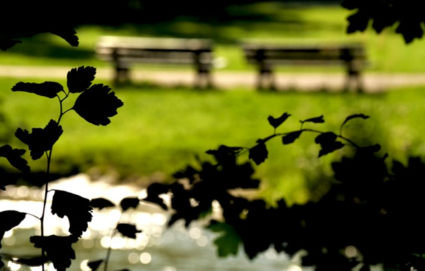 fotokurs-muenchen-englischer-garten-park
