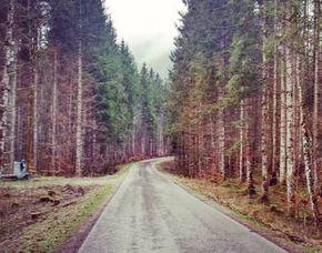 wandertouren-lenggries-fall-g3