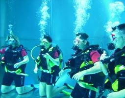 Spezial Tauchkurse - Tauchvorbereitung oder CMAS BASIC Diver - 1 Tag Tauchvorbereitung oder CMAS BASIC Diver - 1 Tag
