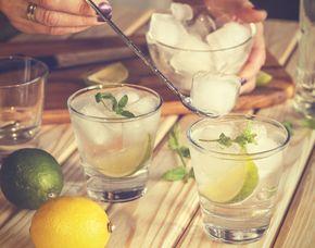 Whisky & Co. - Gin Tasting - 69 Euro - Innsbruck von mind. 6 Sorten Gin & Tonic Water
