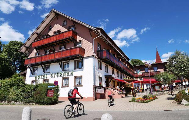 urlaub-mit-hund-schluchsee-hotel