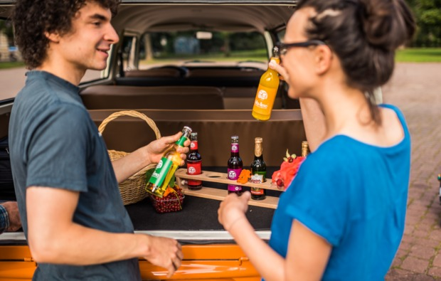 aussergewoehnliche-stadtrundfahrt-dresden-picknick