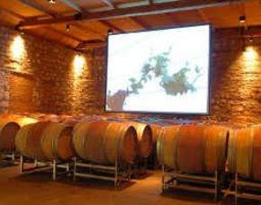 Weinerlebnis für Zwei von 19 Weinen mit Weinraumführung