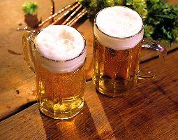 Bierverkostung - 49Euro - Landhotel Zur Oase - Feldatal von 12 Sorten Bier oder 7 Craft-Beer-Sorten