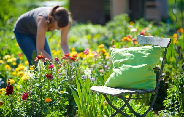 urban-gardening-frankfurt-am-main-bg8