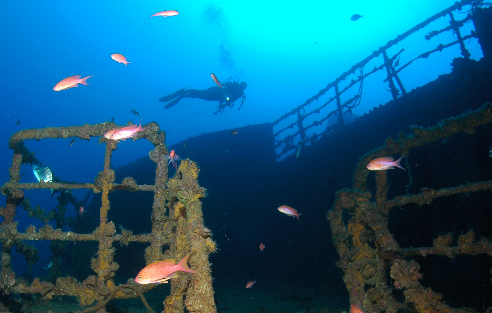 tauchkurs-advanced-open-water-diver-in-nordhausen-fuer-fortgeschrittene-bg3