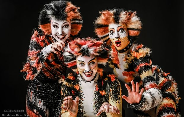 musical-dinner-schwabenheim-cats