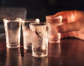 Vodka-Tasting - Schwetzingen Vodkaverkostung von 6 Sorten