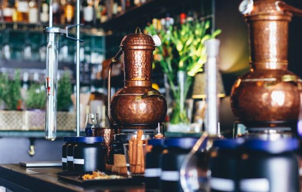 gin-verkostung-brennkurs-curtaincallbar-bg1